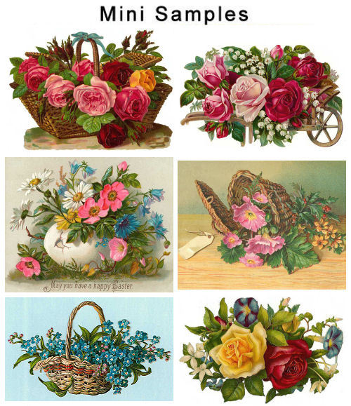 Product picture Vintage Flowers Photos 800